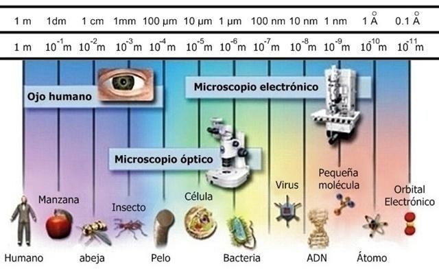 instrumentos-opticos-necesarios-para-observar-el-tamano-de-distintos-objetos