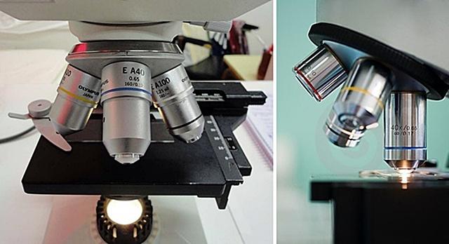 lentes-de-microscopio