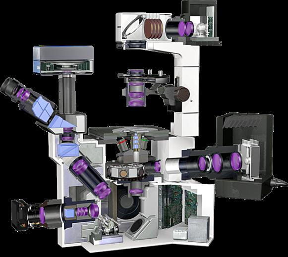 Microscopio_invertido
