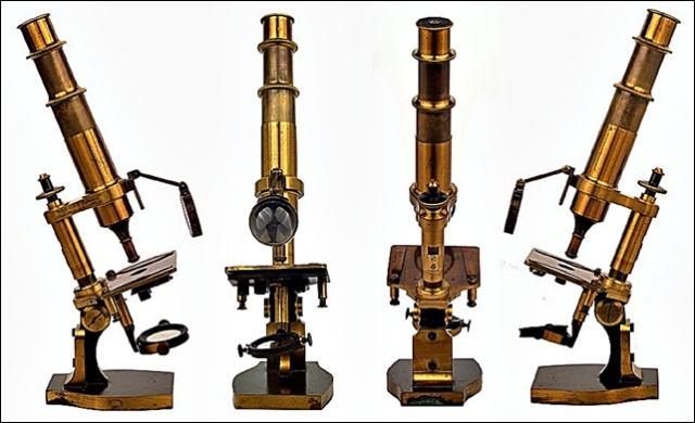 camille_nachet_microscopio
