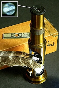 microscopio-de-tambor