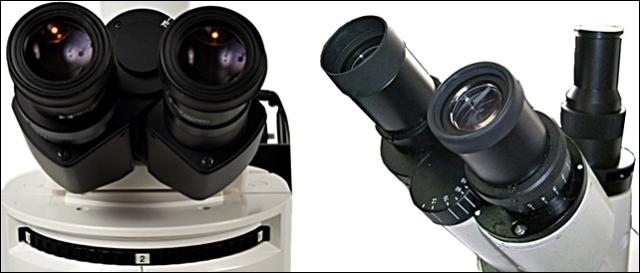 microscopios_oculares