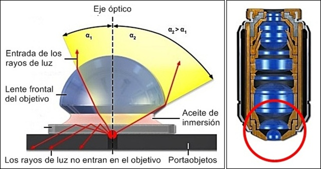 Lente semi-esférica