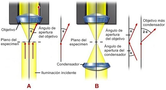 Apertura_Numérica