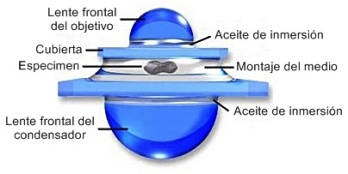 Sistema de inmersión