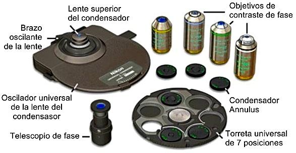configuración óptica de contraste de fase