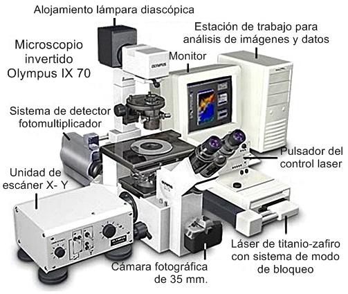 Microscopio invertido Olympus IX70