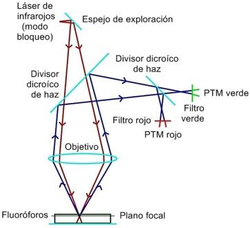 Diagrama de microscopio de excitación de dos fotones