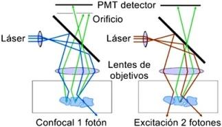 Excitación con dos fotones