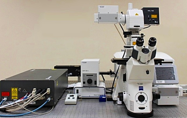 Microscopía de 2 fotones de excitación